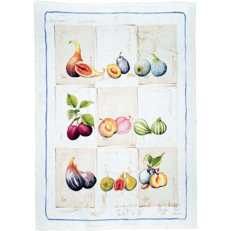 Herbario Ficus Crema Cm. 50X 70